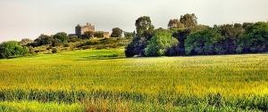 Coni-visuali-pittoreschi-da-tutelare-Serra-tra-Galatina-e-Collemeto-Masseria-fortificate-2