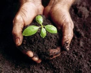 si convertano i biostabilizzatori in impianti di compostaggio