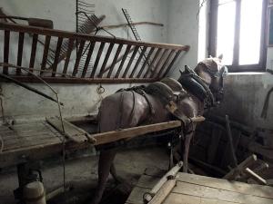 Museo della Civiltà Contadina, il carro